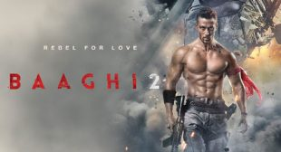 Baaghi 2 Song Soniye Dil Nayi is Released