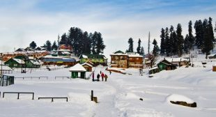 Honeymoon, Family Tour & Holiday Packages in Kashmir