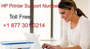Take advantage of 100% call response rate and our support service