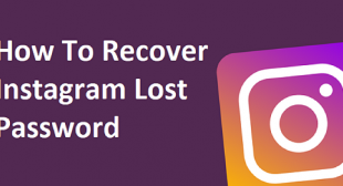 How To Reset The Instagram Password?