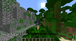 How to Teleport to Coordinates in Minecraft