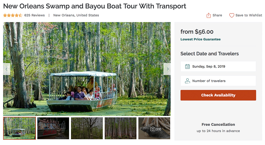 7 Best Swamp Tours in New Orleans