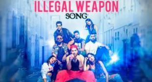 ILLEGAL WEAPON 2.0 LYRICS