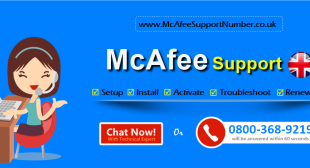 Contact McAfee Support