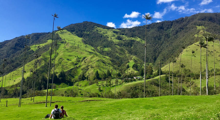 Hiking The Valle de Cocora in Colombia: A How-To Guide