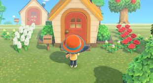 Where to Find Roses in Animal Crossing: New Horizons