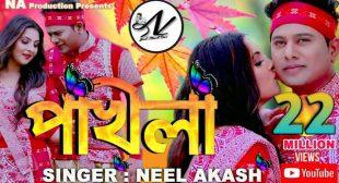 Pokhila Lyrics | Neel Akash | Assamese Romantic Lyrics